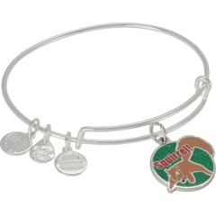 Christmas Vacation Squirrel Bangle Bracelet Alex and Ani
