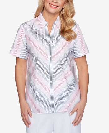 Plus Size Classics S1 Mitered Ombre Stripe Top Alfred Dunner