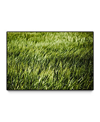 "Grass II Oversized Framed Canvas, 60"" x 40"" Giant Art"