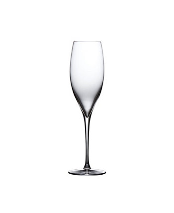 Terroir Champagne Glass, Set of 2 Nude Glass