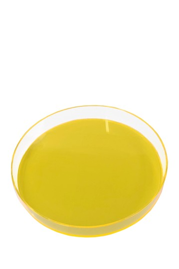 Neon Yellow Round Tray R16 HOME