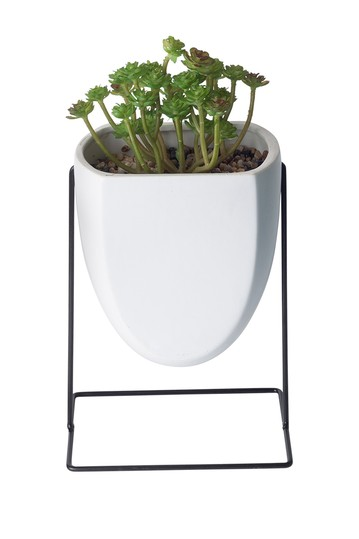 White Succulent Planter on Metal Stand Home Essentials and Beyond