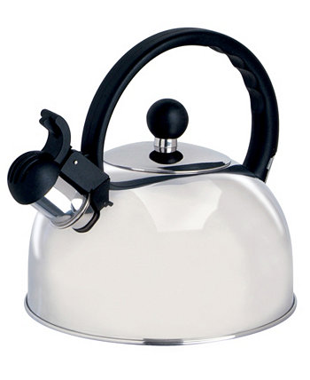 2.25 Qt. Stainless Steel Kettle Springberry